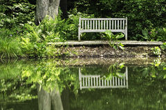 Peaceful view: Park bench and reflection in pond Royalty Free Stock Photo