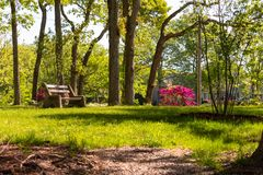 A Park Bench in Spring Lake. A park bench among flowers and trees in Divine Park, Spring Lake, NJ Royalty Free Stock Image