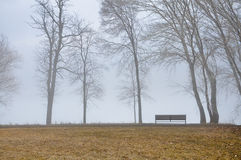 Park bench on a foggy fall day Stock Photo