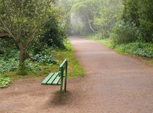 Park Bench on Foggy Morning Royalty Free Stock Image