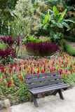 Park bench in garden Stock Images