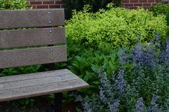 Park bench in a garden setting. With a variety of plants royalty free stock photo