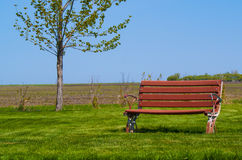 Park Bench on grass with field behind it scenic. A park bench on green grass with a field behind it Stock Photos