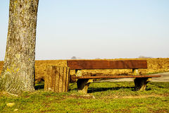 Park bench in the green Stock Image