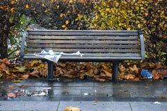 Park bench i atumn Royalty Free Stock Photos