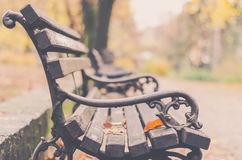 Free Park Bench In The Autumn Colors Light Royalty Free Stock Image - 80201316