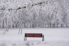 Free Park Bench In The Winter Royalty Free Stock Photos - 153705398
