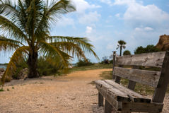 Park bench in Key West Stock Photography