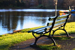 Park bench at the lake. An empty park bench looking over the lake royalty free stock photo