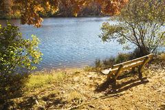 Park bench by a lake Stock Image