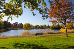 Park Bench by the Lake in Fall Stock Image