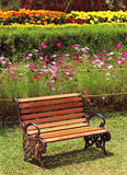 Park bench on meadow. At kateri park near ooty, tamilnadu, india Royalty Free Stock Photo