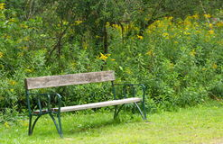 Park bench in the nature Stock Photos