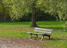 Park bench in the nature Stock Photography