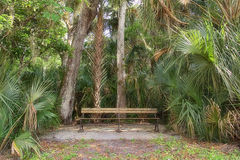 Park Bench In Nature Royalty Free Stock Image