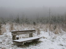 Park bench in nature Royalty Free Stock Images