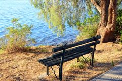 Park Bench Near Sea. A dark painted wooden slat park bench under a shady tree beside gently rippled sea water stock images