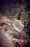 Park Bench. Old bench surrounded by flowers. Florence, Tuscany Stock Image