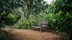 Park bench in Palm Beach. Park bench in Palm Beach, Florida. High resolution image Royalty Free Stock Images
