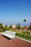 Park bench in paradise. At Orotava, Canary Islands Royalty Free Stock Photography