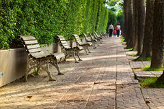 Park bench by park Stock Photography