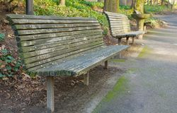 Park Bench perspective Deeper DOF Stock Image