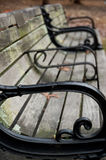 Park Bench Portrait Royalty Free Stock Images