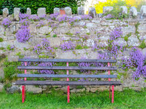Park Bench with Purple Flowers Stock Photography