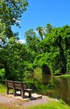 Park Bench on River at Horton Slough. River view at Horton Slough with park bench Royalty Free Stock Image