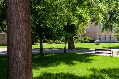 Park with bench and road Royalty Free Stock Photo