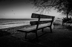 Park Bench On The Sea Shore Stock Images