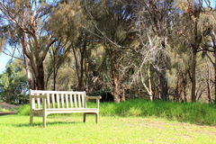 Park bench seat Royalty Free Stock Photo