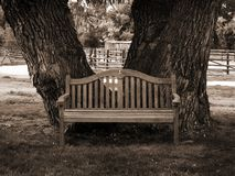 Park bench in sepia. Park bench in classic sepia with trees Stock Image