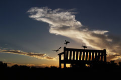 Park Bench Silhouetted Against a Cloudy Sunset With Birds Stock Photo