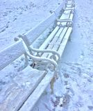 Empty Park Bench with Snow in Daytime Royalty Free Stock Photography