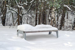 Park Bench with Snow in Winter Stock Image