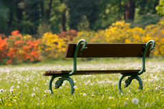 Park bench in spring Royalty Free Stock Images