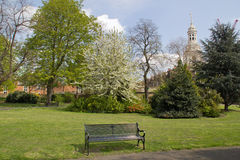 Park bench in spring with Church in background, Greenwich, England Royalty Free Stock Photography