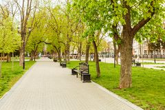Park bench spring urban landscape recreation. In city Royalty Free Stock Photos