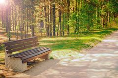 Park bench. a summer boarding house. walking in the cool shade of trees royalty free stock photo