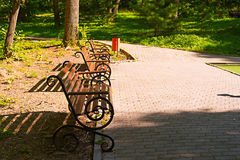 Park bench at sunset. Sunny summer evening Stock Photo
