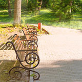 Park bench at sunset. Sunny summer evening Stock Image