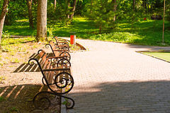 Park bench at sunset. Sunny summer evening Royalty Free Stock Image