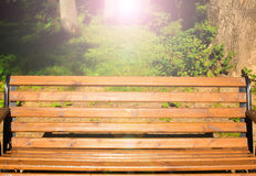 Park bench at sunset. Sunny summer evening Royalty Free Stock Images