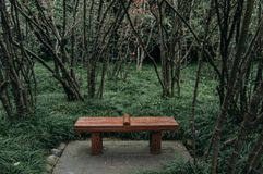 A park bench surrounded by Chinese flowering crabapple. Chengdu, China stock photos