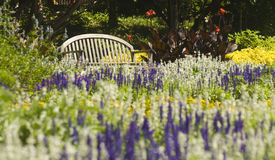Park bench surrounded by flowers Royalty Free Stock Photography