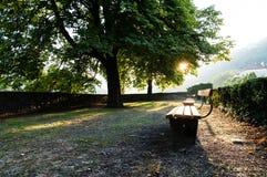 Park bench. Taken in Heidelberg, Germany Stock Image