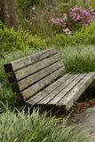 Park Bench in tall grass royalty free stock images