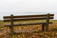 Park bench and tree on lake Chiemsee, Germany Stock Photos