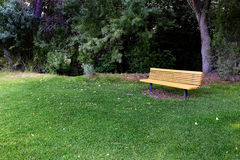 Park Bench with Trees in Area to Rest Stock Photography